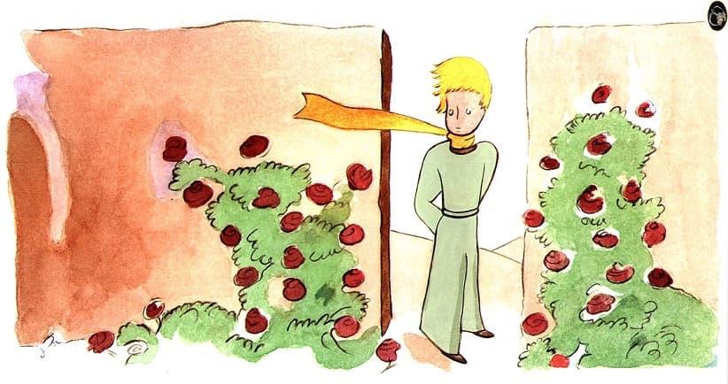 Le Jardin de Roses 1 - شازده کوچولو(خلاصه، نقد،پیام های کتاب )